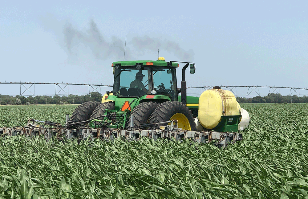 sidedressing corn nitrogen