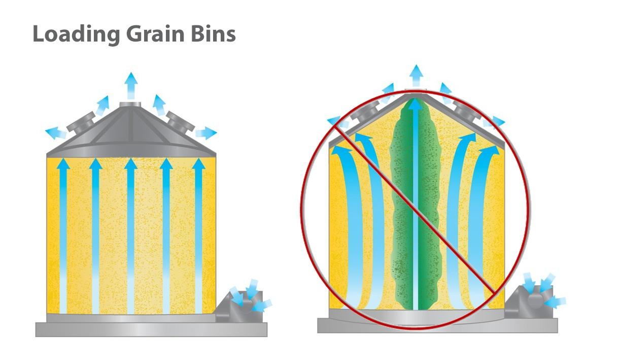 Loading+Grain.jpg