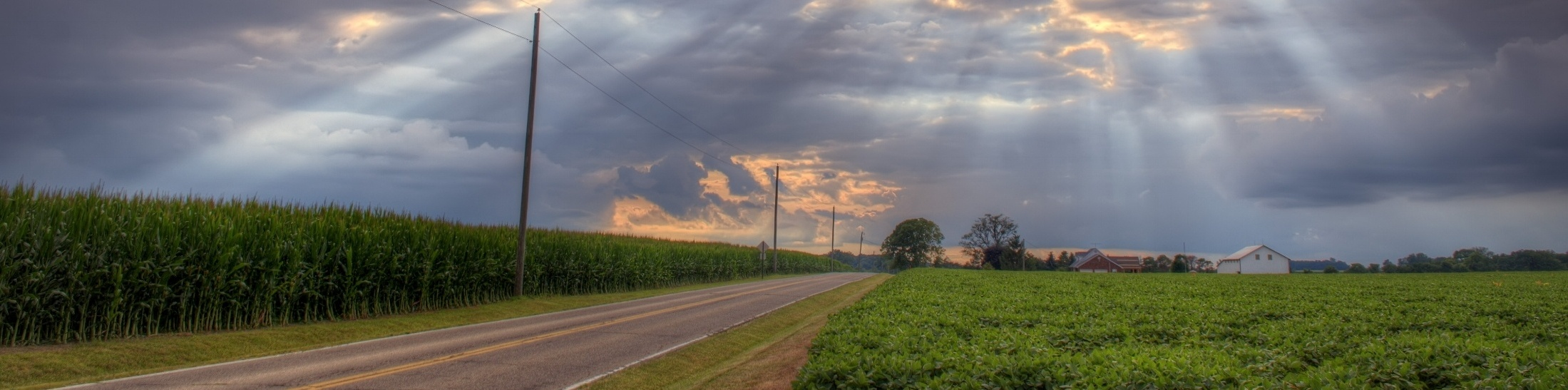 Ohio Corn and Soybeans-649285-edited-718464-edited