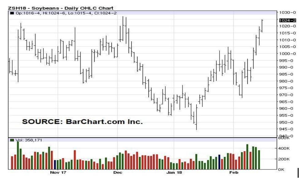 daily charts grain market analysis